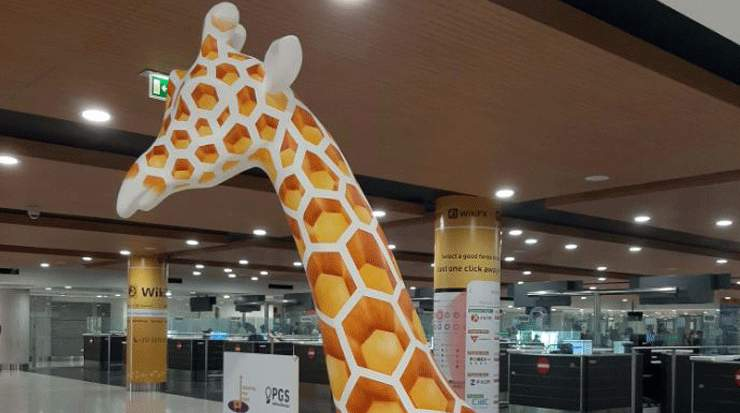 Giraffes for Hope at Larnaca Airport